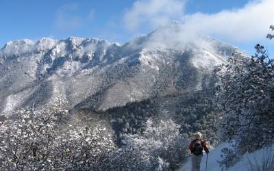 Hiking in Tucson | Hiking Mt. Wrightson