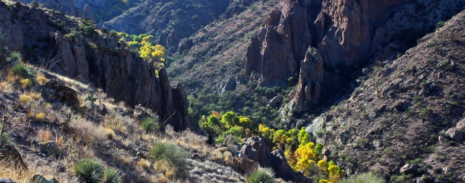 Hiking Near Tucson | Redfield Canyon