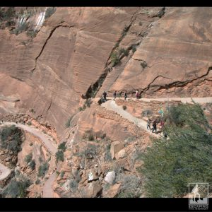 Hiking Zion National Park | The Trail