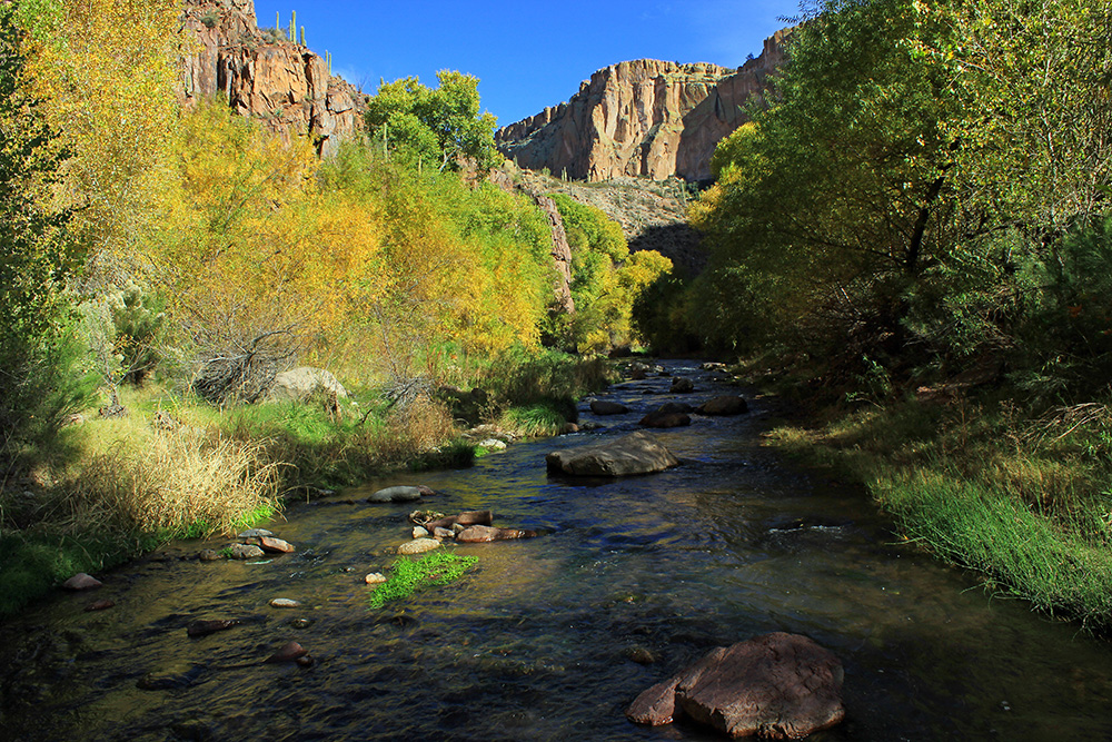 Unique Bucket List Ideas | Aravaipa Canyon