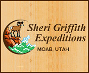 Sheri Griffith Experience