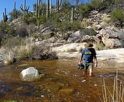 "hiking trails in tucson | Steve and Mona Liza loves"" width="