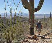 "hiking trails in tucson | Oregonian Media Group"" width="