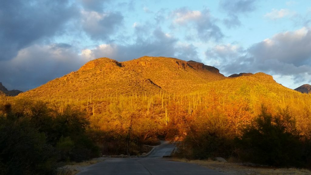 hikes-in-Tucson