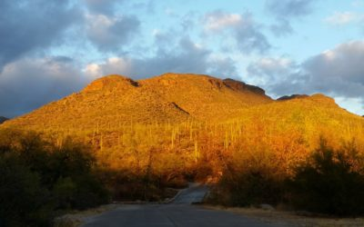 Tucson-hiking-guide