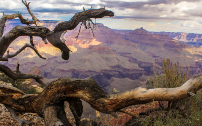 hiking-Grand-Canyon